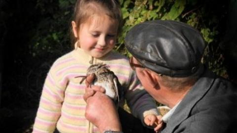 Энгельсский пенсионер пойдет под суд за растление дошкольницы