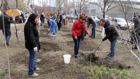 Саратовские полицейские высадили 70 деревьев к 70-летию Великой Победы