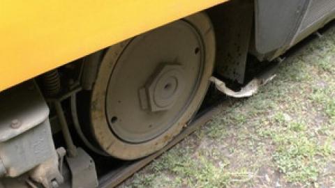 Следователи ищут свидетелей наезда трамвая на пенсионерку в Саратове