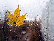 Неделя начнется с тепла и закончится дождями