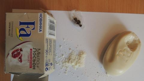 В саратовскую колонию не проскользнуло мыло с наркотической начинкой