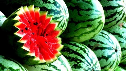 Саратовцы за год съели овощей и бахчевых больше всех в Приволжье