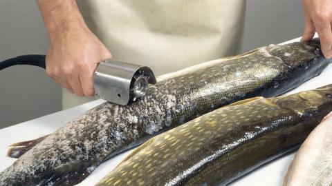 Пьяный мужчина вспорол себе живот при разделке рыбы