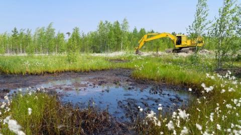 Под Энгельсом непоправимо испорчено нефтью пять соток плодородной почвы