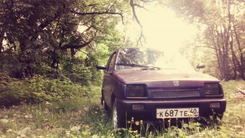 При тушении лесного пожара нашелся угнанный автомобиль