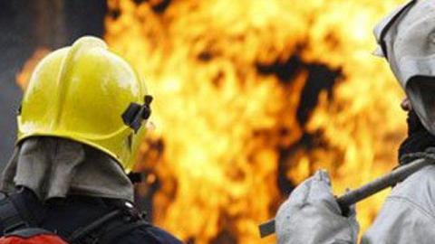 В Саратове сгорели три гектара камыша и немецкий внедорожник