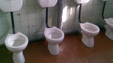 фото в школьном туалете
