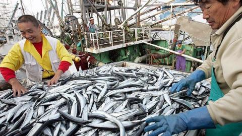 За год резко упали зарплаты у саратовских рыбоводов