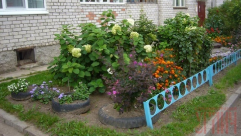 В Саратове выберут лучшие улицу, дом и двор