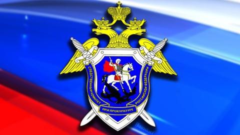 Сегодня отмечается День сотрудника органов следствия России