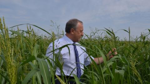 Собран первый миллион тонн зерна нового урожая в Саратовской области