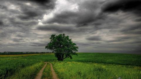 В Саратове - пасмурный вторник без дождя