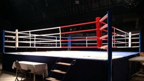 Ринг для боя Чеботарева и Митрофанова привезут из Самарской области