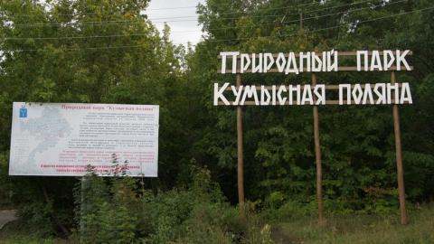 Прокуроры хотя запретить рубить деревья и строить здания на Кумысной поляне