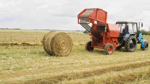 При тюковании сена под Саратовом погиб фермер
