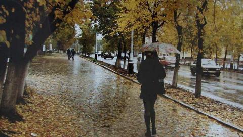 Всю Саратовскую область накроют дожди