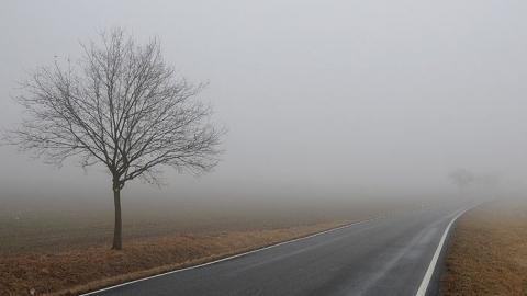 Самые сложные дорожные условия из-за тумана установятся на Волгоградской трассе