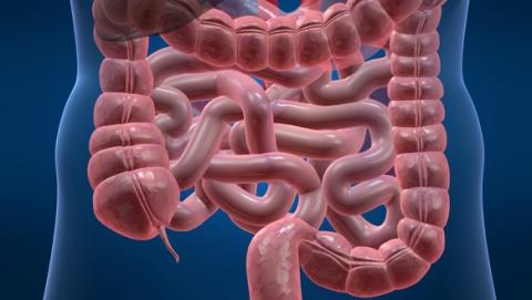 Один рецидивист обеспечил другому разрыв кишечника