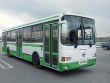 Водители автобусов становятся виновниками ДТП раз в месяц