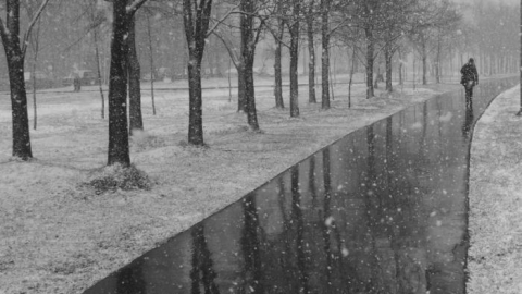 В Саратове снег снова превратится в  дождь