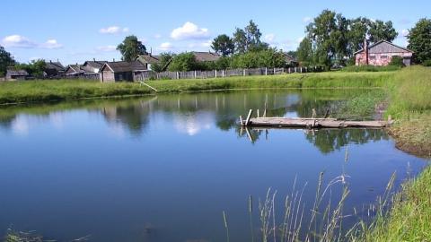 В Саратовской области 82 пруда являются потенциально опасными