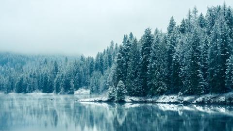 Зима вернется в Саратов к концу недели