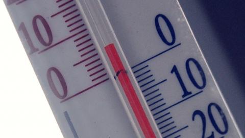 В Саратове задержится аномально теплая погода