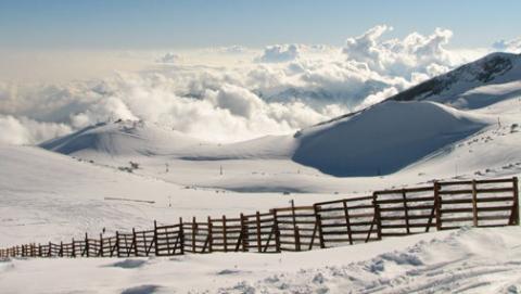 С трассы Саратов - Балашов украли щиты для снегозадержания