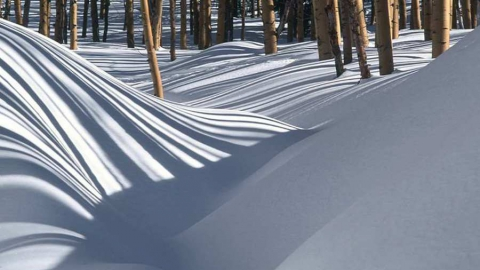 29 января в Саратове резко потеплеет и выпадет много снега