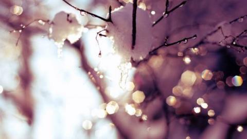 Среда 10 февраля станет еще одним теплым солнечным днем в Саратове