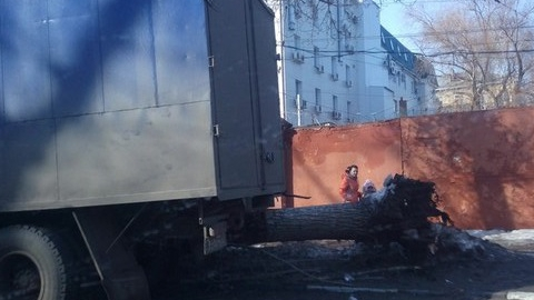Пользователи соцсетей: в Саратове на машину упало дерево ...: https://www.saratovnews.ru/news/2016/02/29/polzovateli-socsetei--v-saratove-na-mashiny-ypalo-derevo/