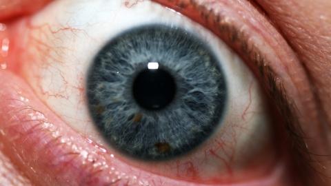 Житель Питерки случайно выстрелил себе в глаз