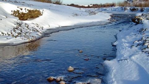 22 марта в Саратове должен выпасть и растаять снег