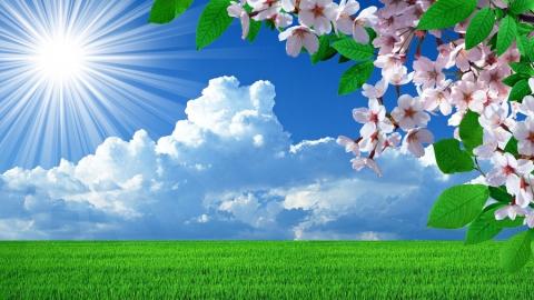 11 апреля в Саратове будет теплым и солнечным