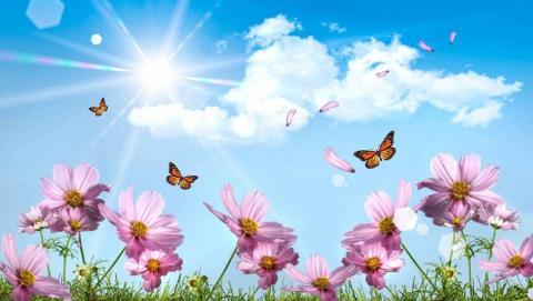 10 мая в Саратове тепло и солнечно