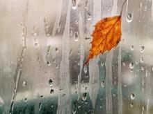 Прогноз погоды на 16 октября. Возможен дождь
