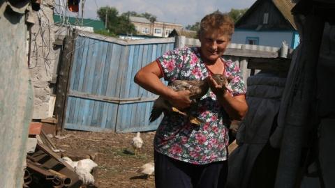 Сельскохозяйственная перепись в Саратовской области проходит с опережением графика