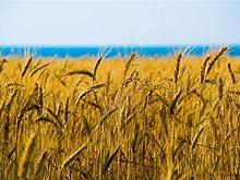 Губернатор пожаловался на невостребованность агрострахования в области
