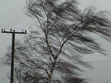 Прогноз погоды на 29 октября. МЧС предупреждает об опасности