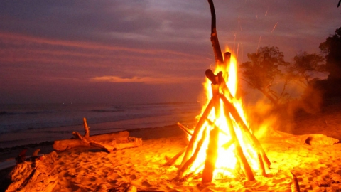 ВСаратовской области резко выросло число возгораний отжидкости для розжига
