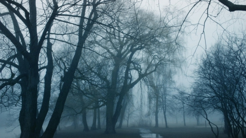 ВСаратове сохранится холодная пасмурная погода