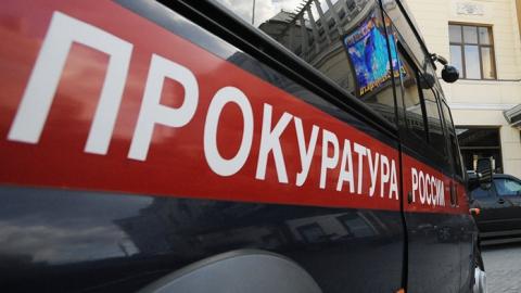 Генпрокуратура организовала проверку пофакту взрыва вдетском саду