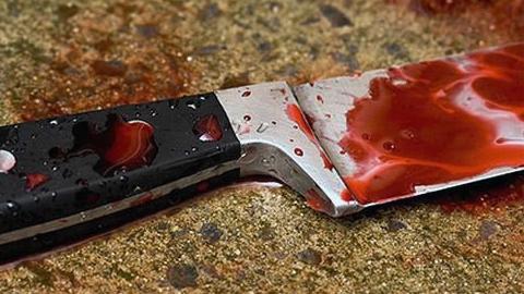 Саратовчанка вприсутствии малолетнего сына убила собственного отца