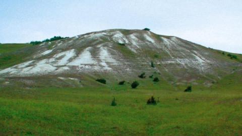 «Лосиный остров» возглавил рейтинг самых известных парков для экотуризма в РФ
