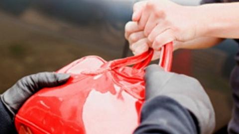 Двое рязанцев вытянули из сумочки саратовчанки 2 тыс. рублей, карту идокументы