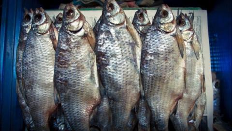 Инспектор Россельхознадзора непустил вобласть автомобиль с300 килограммами рыбы