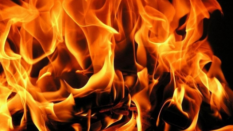 Напожаре под Саратовом погибли два человека