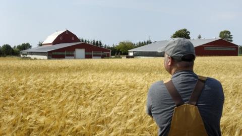 Приставы взыскали с фермера-должника 1,4 миллиона