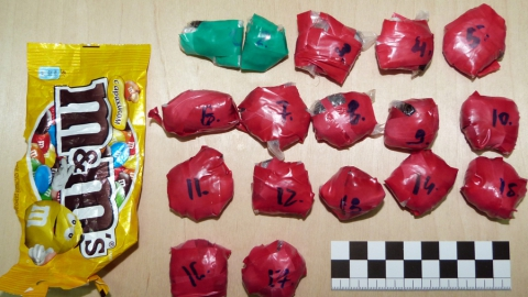 Саратовец с другом сохраняли дома 2,5кг синтетических наркотиков
