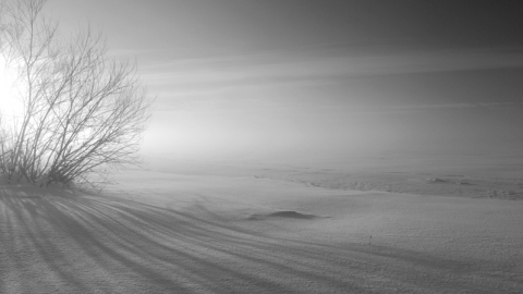 В Саратове будет пасмурно и морозно